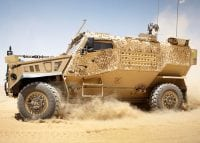 foxhound in desert